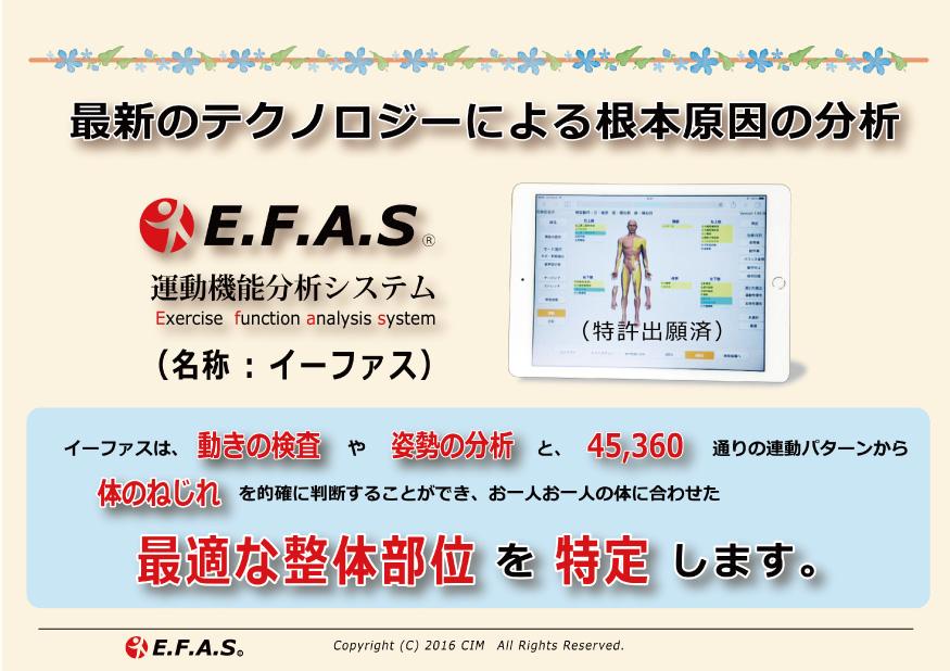 E.F.A.S(イーファス)